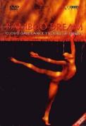 Cloud Gate Dance Theatre of Taiwan, Arvo Pärt, Gidon Kremer, Keith Jarrett, Lin Hwai-Min: Bamboo Dream - DVD