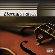 Çeşitli Sanatçılar: Strings (Eternal) - CD