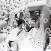 Björk: Vespertine - Plak
