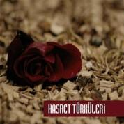 Çeşitli Sanatçılar: Hasret Türküleri - CD
