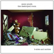 Sonic Youth: The Destroyed Room  B-Sides And Rarities - CD