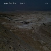 Anat Fort Trio: And If - CD
