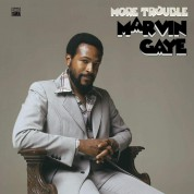 Marvin Gaye: More Trouble - Plak