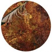 Nine inch Nails: The Downward Spiral - Plak