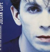 Julian Cope: My nation underground - Plak