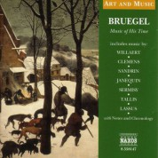 Çeşitli Sanatçılar: Art & Music: Bruegel - Music of His Time - CD