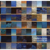 Tindersticks: The Something Rain - Plak