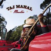 Taj Mahal: Maestro - CD