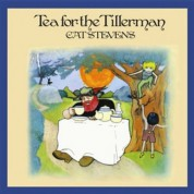 Cat Stevens: Tea For The Tillerman (200g-edition) - Plak