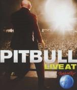 Pitbull: Live At Rock In Rio - DVD