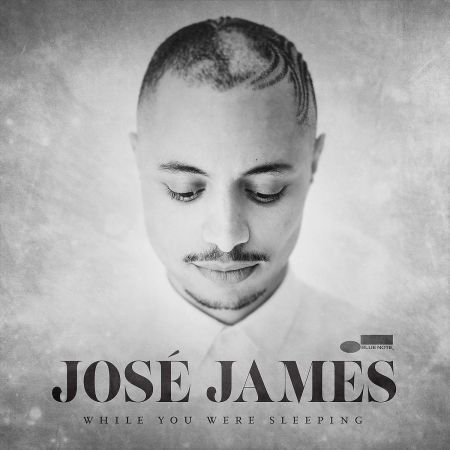 José James: While You Were Sleeping - Plak