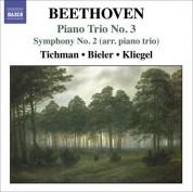 Xyrion Trio: Beethoven, L. Van: Piano Trios, Vol. 3 - Piano Trio No. 3 / Symphony No. 2 (Arr. for Piano Trio) - CD