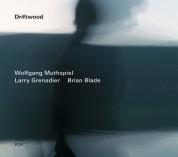 Wolfgang Muthspiel, Lenny Grenadier, Brian Blade: Driftwood - CD