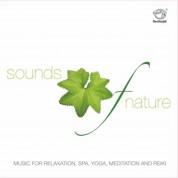 Joseph Vijay: Music For Relaxation - CD