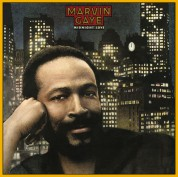 Marvin Gaye: Midnight Love - Plak