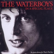 Waterboys: In A Special Place (The Piano Demos for This Is The Sea) - CD
