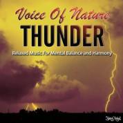 Çeşitli Sanatçılar: Thunder - CD