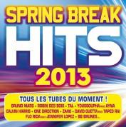 Çeşitli Sanatçılar: Spring Break Hits 2013 - CD