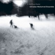 Christian Wallumrød Ensemble: A Year From Easter - CD