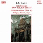 Bach, J.S.: Trio Sonatas, Bwv 525-527 / Prelude and Fugue, Bwv 543 - CD