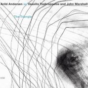 Arild Andersen, Vassilis Tsabropoulos, John Marshall: The Triangle - CD