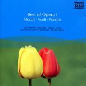 Çeşitli Sanatçılar: Best Of Opera I - CD