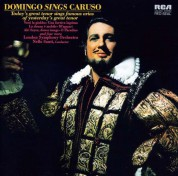 Plácido Domingo: Domingo sings Caruso - CD