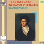 Beethoven: Essence of the Beethoven Symphonies (The) - CD