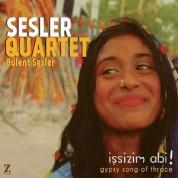 Bülent Sesler: İşsizim Abi - CD