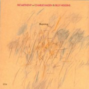 Pat Metheny: Rejoicing - CD