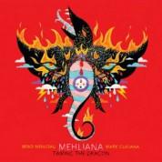 Brad Mehldau, Mark Guiliana: Mehliana: Taming The Dragon - Plak