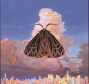 Chairlift: Moth - CD