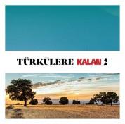 Çeşitli Sanatçılar: Türkülere Kalan 2 - CD