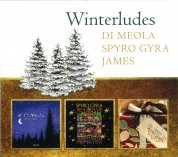 Al Di Meola, Spyro Gyra, Boney James: Winterludes - CD
