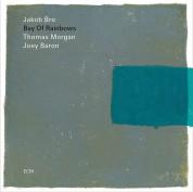Jacob Bro: Bay Of Rainbows - Plak