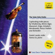 Daniel Gaede, Xuesu Liu: The Tube Only Violin - Plak