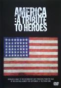 Çeşitli Sanatçılar: America-A Tribute To Heros - DVD