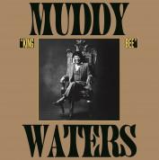 Muddy Waters: King Bee - Plak