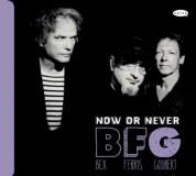 Emmanuel Bex, Glenn Ferris, Simon Goubert: Now or Never - CD