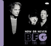 Emmanuel Bex, Glenn Ferris, Simon Goubert: Now or Never - CD