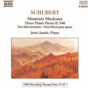 Schubert: 6 Moments Musicaux, D. 780 / 3 Piano Pieces, D. 946 - CD