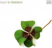 Çeşitli Sanatçılar: Haydn: For Meditation - CD
