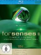 Blu::Elements Project: Forsenses II - BluRay