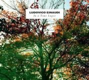 Ludovico Einaudi: In A Time Lapse - Plak
