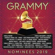 Çeşitli Sanatçılar: 2019 Grammy Nominees - CD