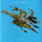 Steve Tibbetts: Big Map Idea - CD