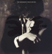 The Waterboys: This Is The Sea (Remastered) - Plak