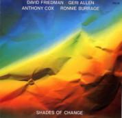David Friedman: Shades Of Change - CD