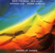 David Friedman: Shades Of Change - CD
