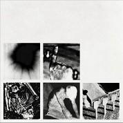 Nine Inch Nails: Bad Witch - Plak